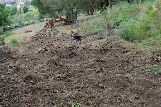 campo-stato-iniziale-escavatore