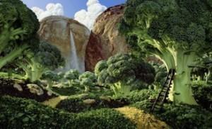 Food Foresting Urbano | Che cosa è & suoi scopi