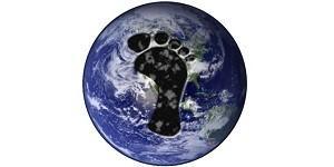 Storica sentenza. Il tribunale ordina all'Olanda di ridurre le emissioni per proteggere i cittadini