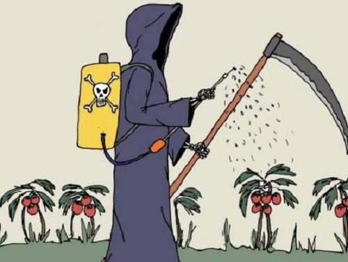Glifosato della Monsanto. Riautorizzandolo l'UE viola il principio di precauzione