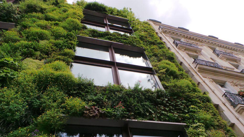 Efficienza energetica nell'edilizia. Le lacune dell'UE e la nostra azione